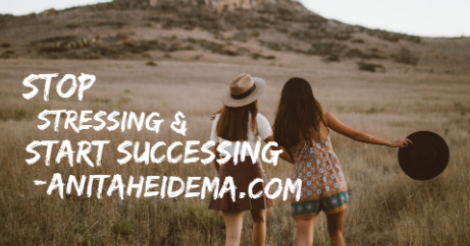 Stop Stressing Start Successing - by Anita Heidema